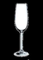 60500700 Бокал для шампанского Edition, 150 мл RONA HoReCa