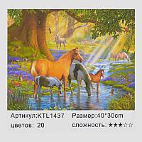 Картина по номерам KTL 1437 (30) в коробке 40х30