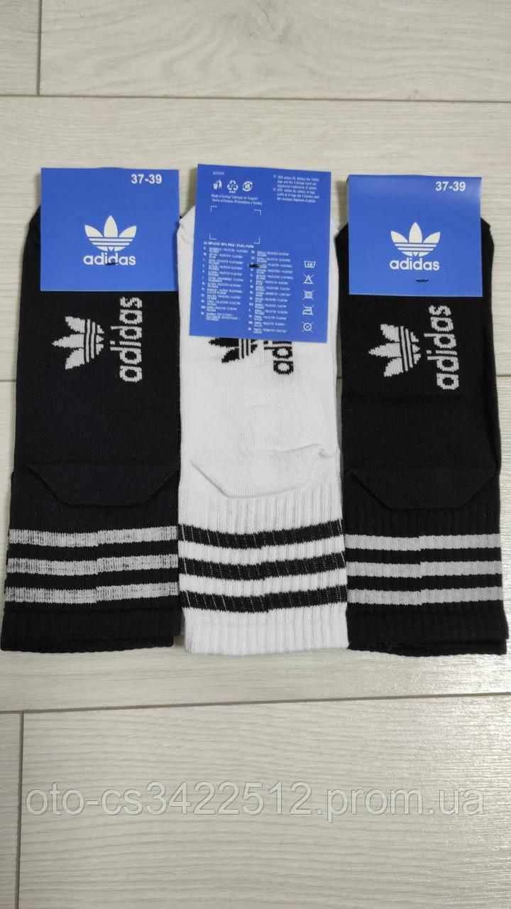 Шкарпетки тонкі спортивні унісекс