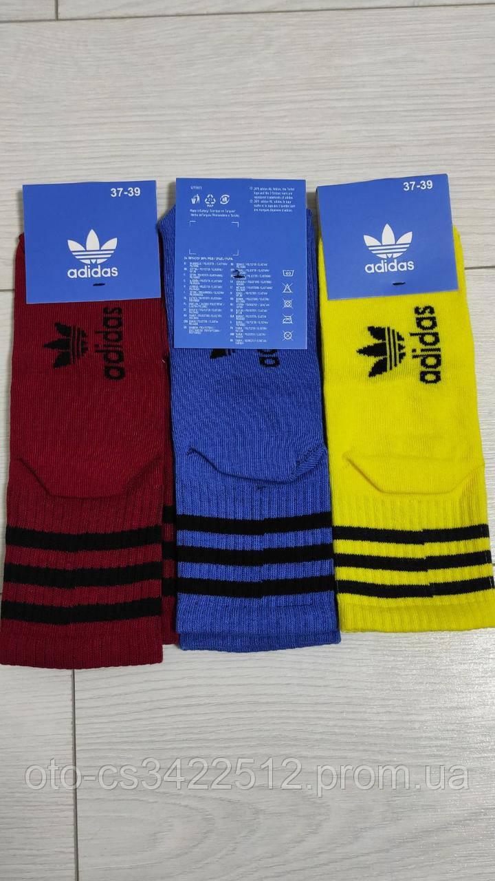 Шкарпетки тонкі спортивні кольорові