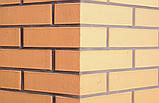 Кирпич клинкерный Керамейя Клинкерам  250x120x65 мм Янтарь Пр1 36%, фото 4