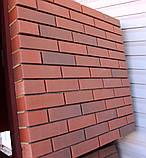 Кирпич клинкерный Керамейя Клинкерам  250x120x65 мм Магма Гранит Пр1 48%, фото 6