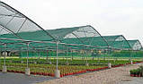 Сітка затіняюча  Classic 60 % затінення, 6.0 х 50.0 (м), фото 3