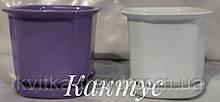 КАКТУС 0,2 л белый керамический вазон
