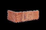 Клинкерная фасадная плитка Purple rain (HF10), 240x71x10 мм, фото 3