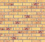 Клинкерная фасадная плитка Amber sea (HF13), 240x71x10 мм, фото 4