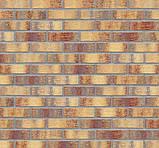 Клинкерная фасадная плитка Rainbow brick (HF15), 240x71x10 мм, фото 5