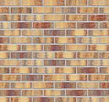 Клинкерная фасадная плитка Rainbow brick (HF15), 240x71x10 мм, фото 6