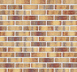 Клинкерная фасадная плитка Rainbow brick (HF15), 240x71x10 мм, фото 7