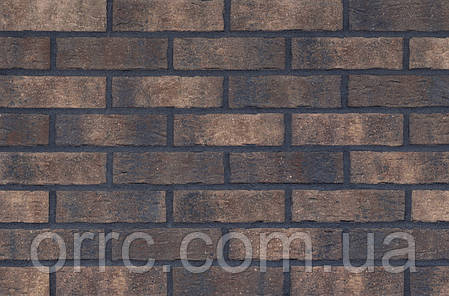 Клінкерна фасадна плитка Monastic cellar (HF20), 240x71x10 мм, фото 2
