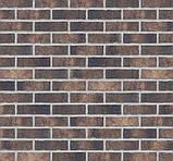 Клинкерная фасадная плитка Monastic cellar (HF20), 240x71x10 мм, фото 4