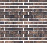 Клинкерная фасадная плитка Monastic cellar (HF20), 240x71x10 мм, фото 6