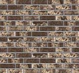 Клинкерная фасадная плитка Smooth jazz (HF24), 240x71x14 мм, фото 2