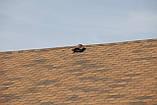 Битумная черепица RUFLEX Ornami Медный Отлив, 3м2, фото 4