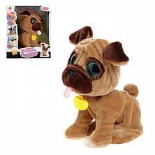 Интерактивный щенок Мопс CH Toys CH-9902 Умный питомец 12 команд Собачка Разговаривающая, фото 3