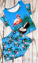 Трикотажная женская пижама футболка с шортами ШП-Фламинго(ТП), фото 3