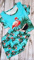 Трикотажная женская пижама футболка с шортами ШП-Фламинго(ТП), фото 2