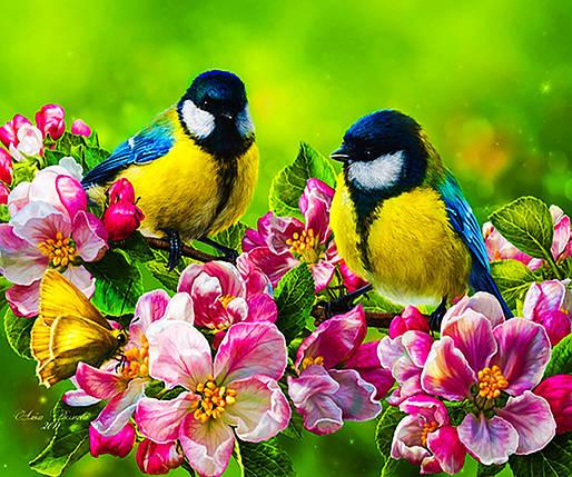 """Алмазная вышивка. Набор алмазной вышивки """"Птички в яблоневом цвету"""". Размер 40*30 см., фото 2"""