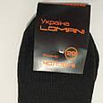 Носки мужские зимние махровые черный Lomani 43-45 размер, фото 3