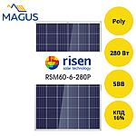 Солнечная батарея Risen Energy RSM60-6-280P, 280 Вт 5BB (поликристалл)