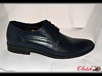 Туфли мужские классические Box&Co кожа тёмно-синие на шнуровке Box0004