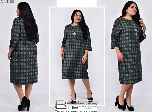 Повседневное платье батал Минова Размеры: 50.52.54.56.58.60.62, фото 2