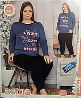 Утепленная женская пижама начес L(48-50). Одежда для дома и сна. Турция