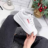 Кроссовки женские Supre белые 2780, фото 8