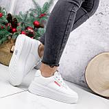Кроссовки женские Supre белые 2780, фото 6