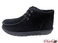 Угги мужские Ugg натуральная замша низкие на шнурках KF0099