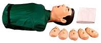 Максим I (Т) Тренажер сердечно - легочной и мозговой реанимации