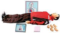 Максим ІІІ-01 (Т-12) Тренажер сердечно-легочной и мозговой реанимации