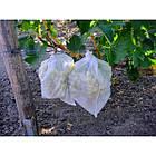 Агроволокно на метраж 23 белый 9,5 м Усиленный край, фото 3