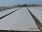 Агроволокно на метраж 23 белый 9,5 м Усиленный край, фото 4
