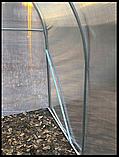 Теплиця «Титан» 3×8 з квадратної оцинкованої труби 1,5 мм з полікарбонатом Soton 6 мм, фото 7