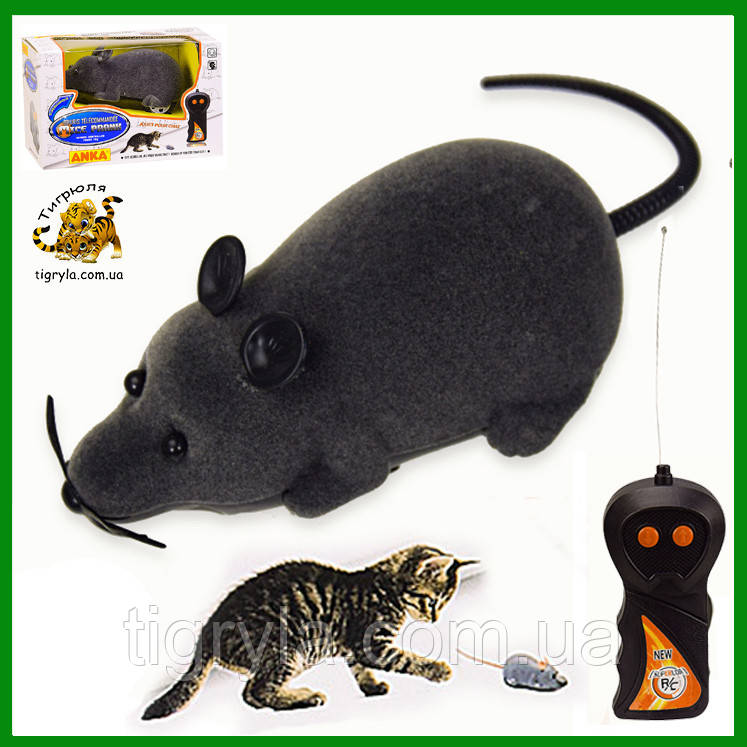 Мышь на дистанционном управлении