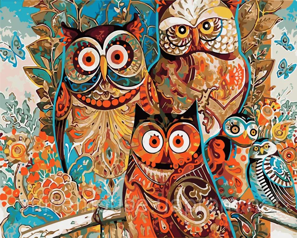Раскраска по цифрам Яркие совы