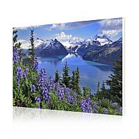 """Картина по номерам Lesko DIY RA3320 """"Альпийские горы"""" 40-50см набор для творчества живопись"""