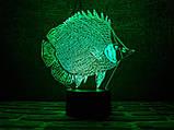 """3D светильник ночник """"Рыбка"""" 3DTOYSLAMP, фото 2"""