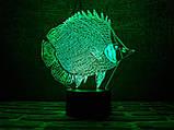 """Детский ночник - светильник ночник """"Рыбка"""" 3DTOYSLAMP, фото 2"""