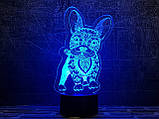 """Детский ночник - светильник """"Бульдог 2"""" 3DTOYSLAMP, фото 3"""