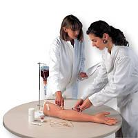 Тренажер для внутривенных инъекций, рука
