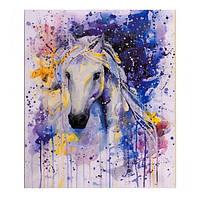 """Картина раскраска по номерам """"Белая лошадь"""", 40х50см. №30448"""