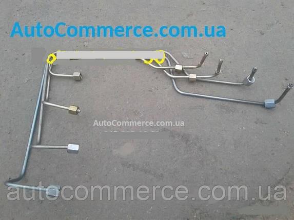 Трубки паливні ТНВД ХАЗ 3250 Антон, фото 2