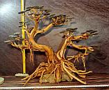 Бонсай для аквариума (50см высота), фото 5