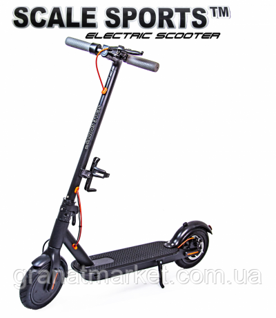 Scale Sports 6119922