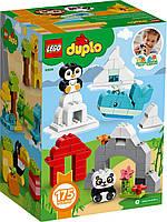 Lego Duplo Набор для веселого творчества Веселые зверюшки (10934), фото 3