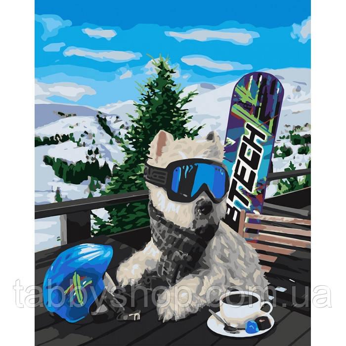 Картина по номерам Идейка - Сноубордист