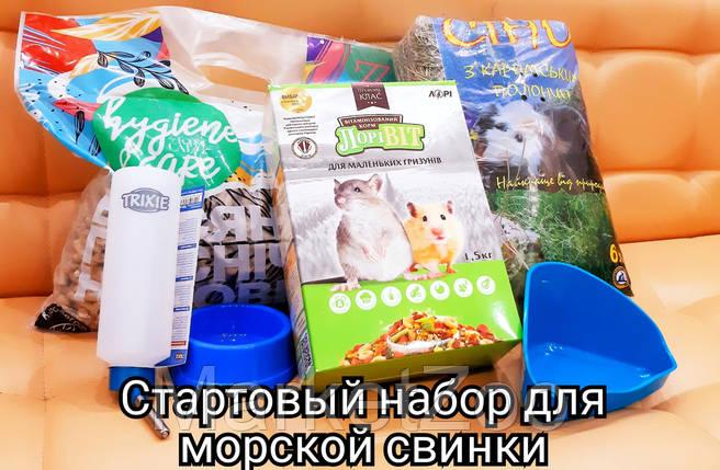 Стартовый пакет для содержания морской свинки- M, фото 2