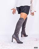 Демисезонные ботфорты женские серые, фото 5